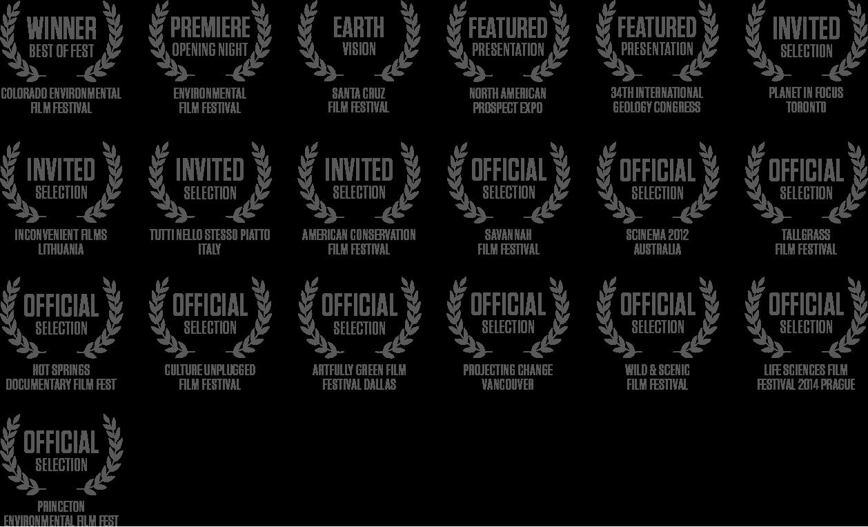 Switch Film Festival Laurels