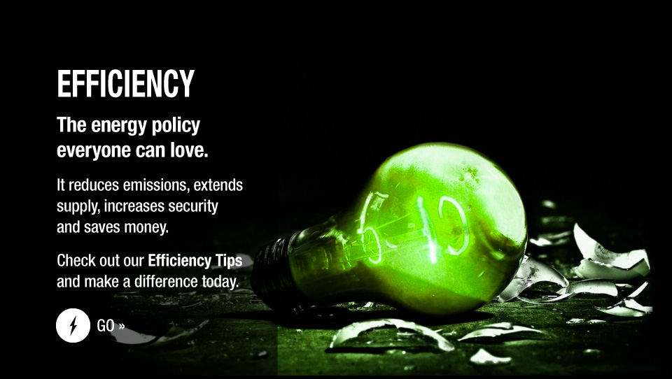 Efficiency – The energy policy everyone can love. – It reduces emissions, extends supply, increases security and saves money.